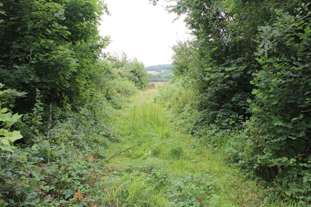 Land with Potential - Lewes Area