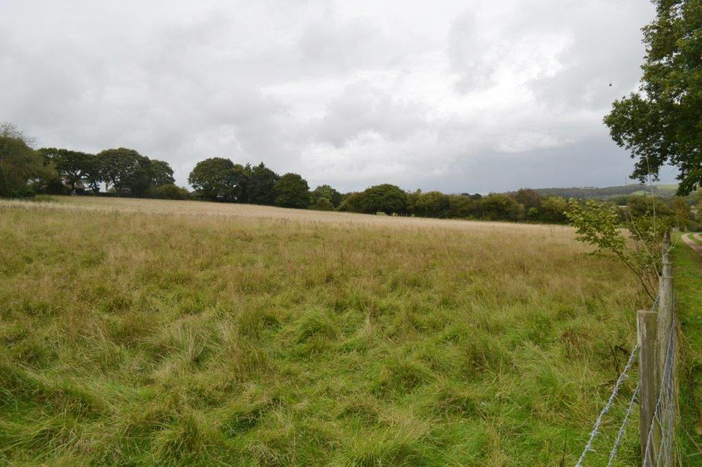 Agricultural Land - Isle of Wight