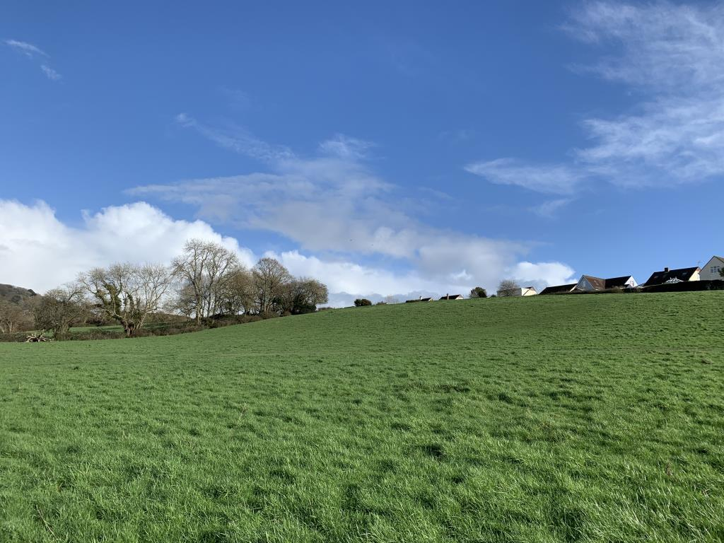 Land with Potential - Barnstaple