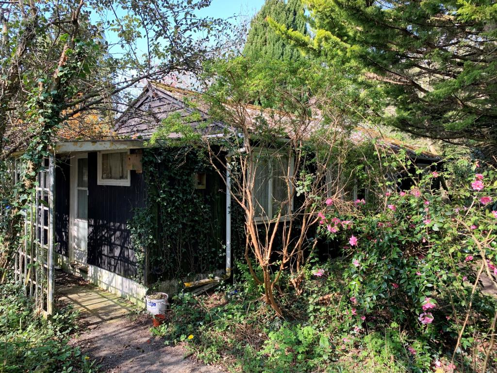 Vacant Residential - New Forest Area