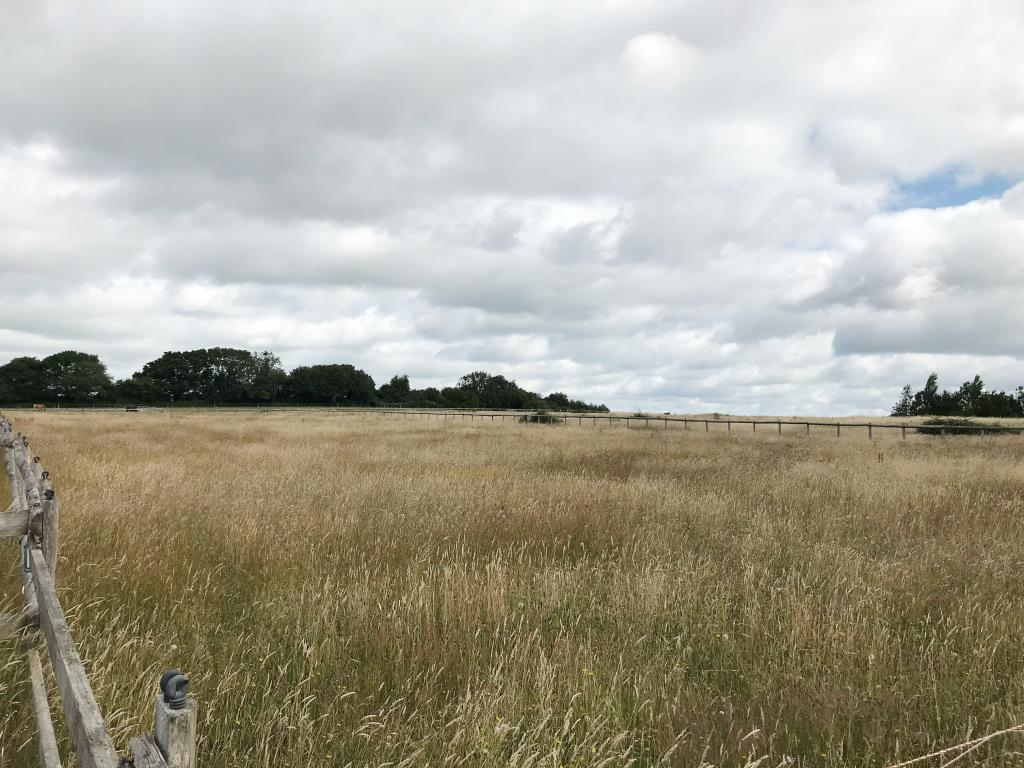 Agricultural Land - Havant & Waterlooville Areas