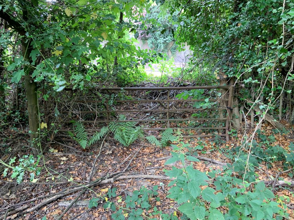 Land with Potential - Mid-Sussex Area