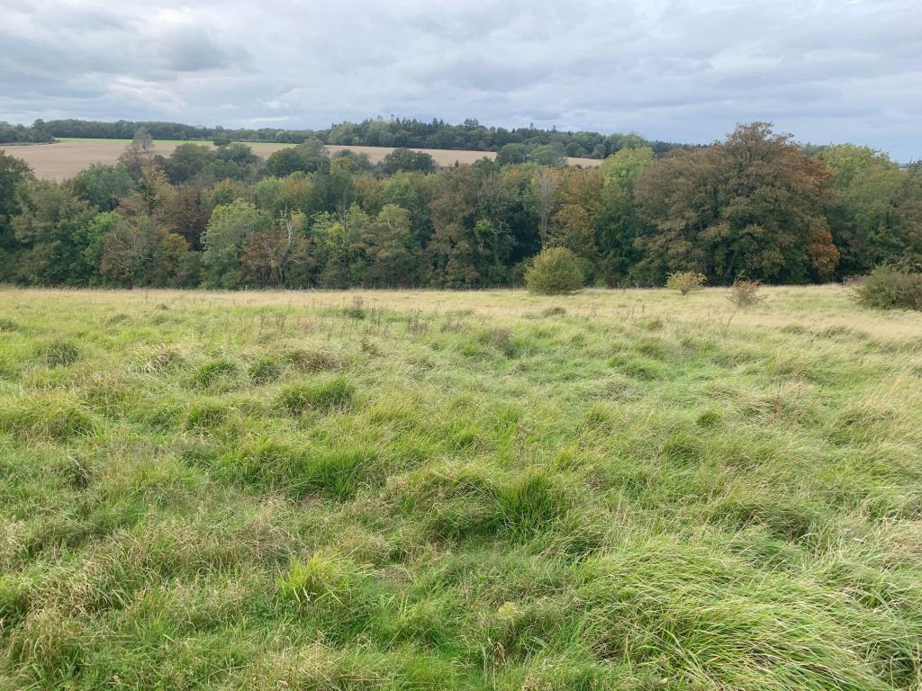 Vacant Land - Canterbury Area