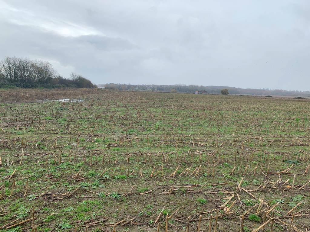 Agricultural Land - Ashford & Mid-Kent Areas
