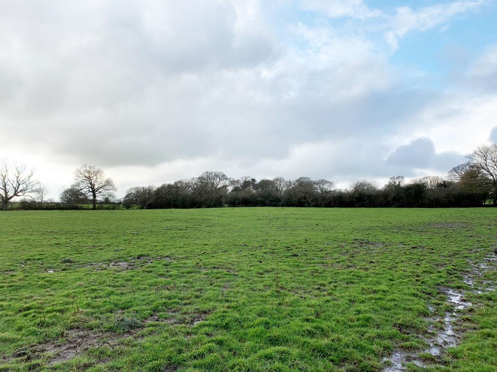 Vacant Land - Hailsham Area