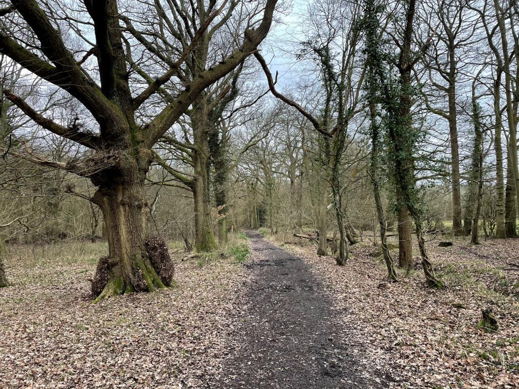 Vacant Land - Surrey