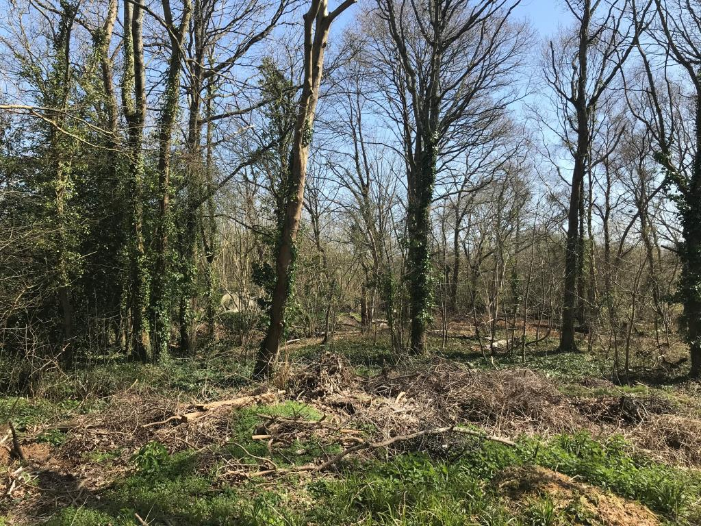 Vacant Land - Meon Valley Area